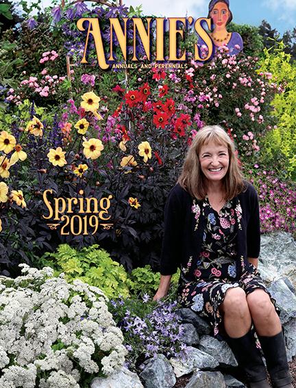 About Annie's Annuals & Perennials