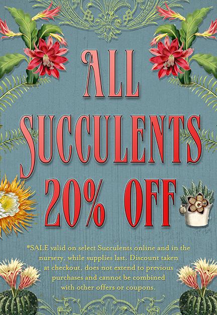 Annie's Annuals and Perennials - Retail and Online Nursery