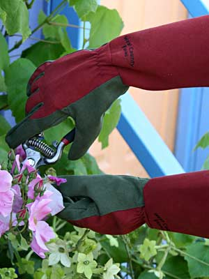West County Rose Gloves Large