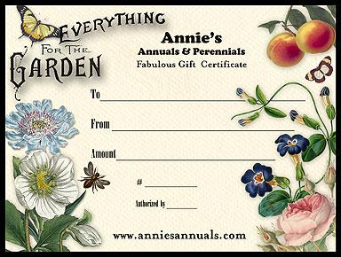 Annie 39 S Annuals Perennials Holiday Gift Ideas That Rock