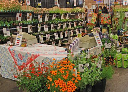 Annie 39 s annuals perennials delphiniums for San francisco flower and garden show
