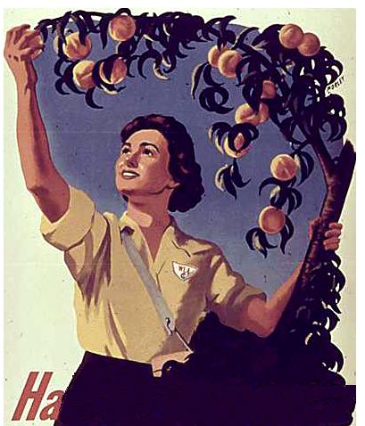 war crops