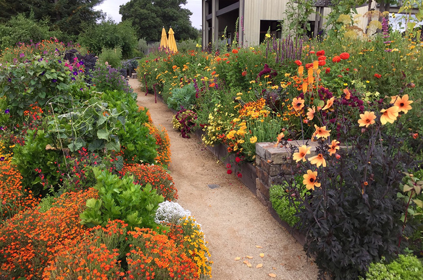 Beautiful We Welcome Back The Fabulous And Talented Kate Frey, Author And Top Notch  Garden Designer (two Time Chelsey Garden Show Gold Medal Winner!
