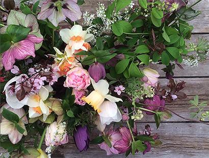 Annie S Annuals Perennials Grow Bouquets